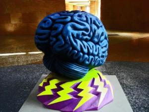 mózg, brain