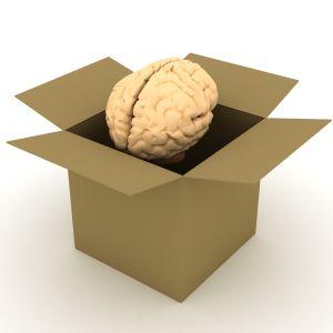 mózg jest w głowie