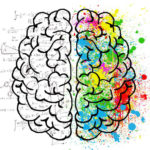 wylew, mózg, brain, drugi wylew